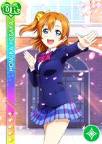 Honoka pure ur1537.jpg