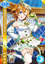 Honoka cool ssr1060 t.jpg
