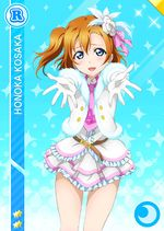 Honoka cool r801 t.jpg